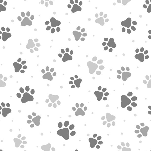 Animal Paw Seamless Pattern Animal Cute Paw Seamless Pattern Background, Vector Illustration dog stock illustrations