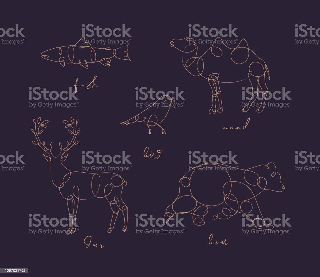 Set of animals fish, camel, bird, deerm bear drawing in pen line...