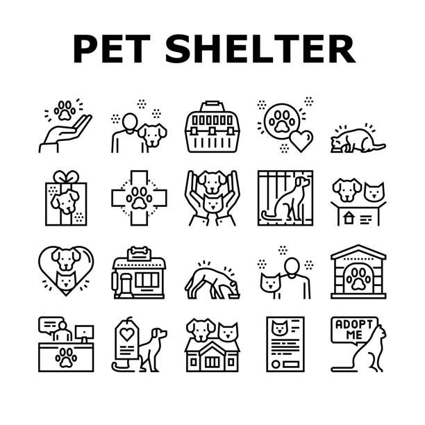 Animal Pet Shelter Collection Icons Set Vector Animal Pet Shelter Collection Icons Set Vector. Pet Shelter Building And Worker, Eating Cat And Dog, Puppy Present And Medical Document Black Contour Illustrations animal body part stock illustrations