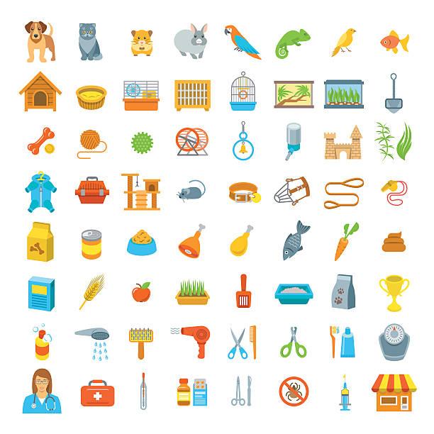animal haustiere pflege und gesundheitswesen flache bunten vektor-icons - hamsterhaus stock-grafiken, -clipart, -cartoons und -symbole