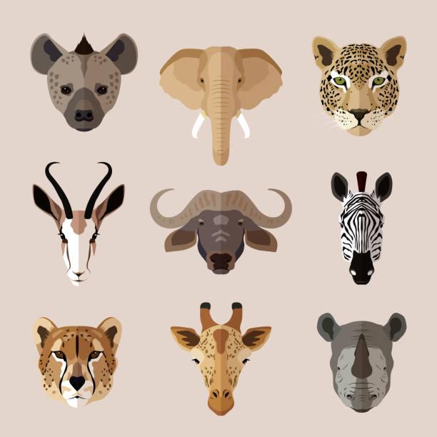 stockillustraties, clipart, cartoons en iconen met dierlijke portret plat pictogram set 2 - hyena