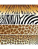 Animal Print | Banners