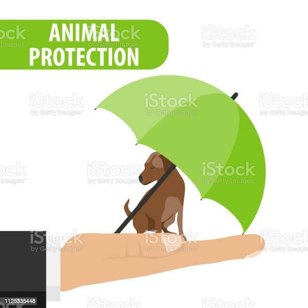 Animal protection the dog sits on the palm of a man under an umbrella vector id1125335448?b=1&k=6&m=1125335448&s=612x612&h=96rvnkaeqmq64ywiodcvwhoy aspttsyyjabul8g5jc=
