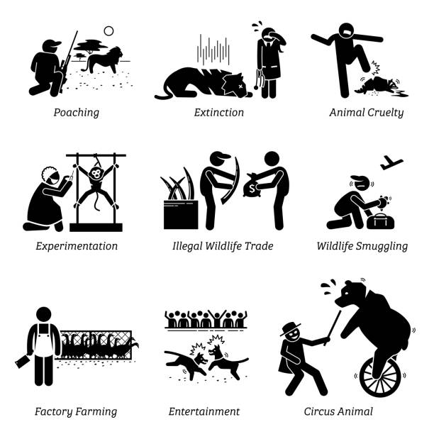 Animal Rights and Issues Stick Figure Pictogram Icons. Illustrations depicts poaching, extinction, animal cruelty, experimentation, illegal wildlife trade, factory farming, entertainment, and circus. poaching animal welfare stock illustrations
