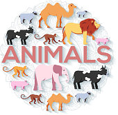 animal round concept of lion, monkey, monkey, camel, elephant, cow