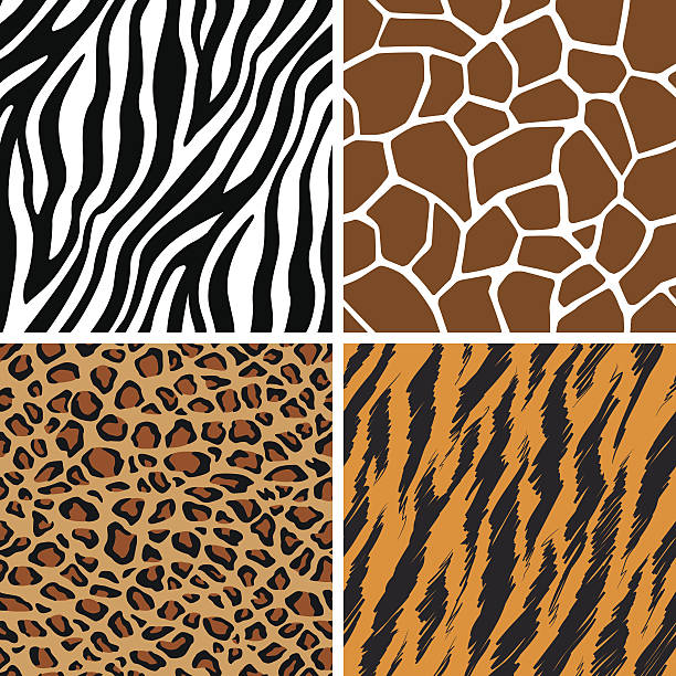 Animal Set - Giraffe, Leopard, Tiger, Zebra Seamless Pattern A set of animal seamless pattern: giraffe, leopard, tiger and zebra skin. This vector is very good for design that need animal element. animal markings stock illustrations