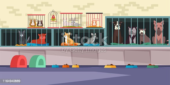 istock Animal shelter, pet shop flat vector illustration 1164940889