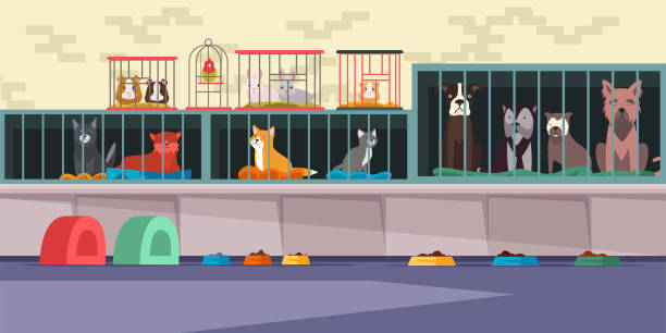 stockillustraties, clipart, cartoons en iconen met dierenasiel, pet shop platte vector illustratie - kooi