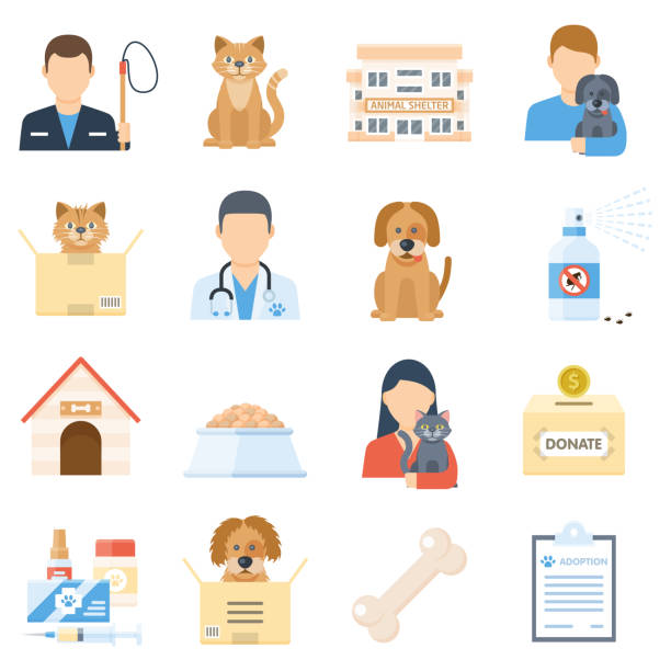 Animal shelter set Animal shelter set. Adopting a homeless pet poster, volunteering with dogs and cats. Vector flat style illustration isolated on white background animal shelter stock illustrations