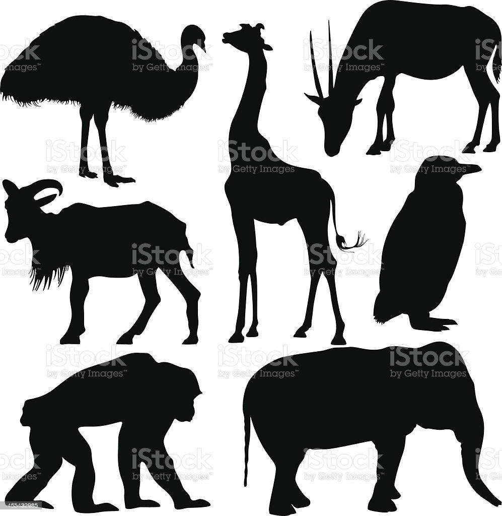 Animal Silhouette vector art illustration