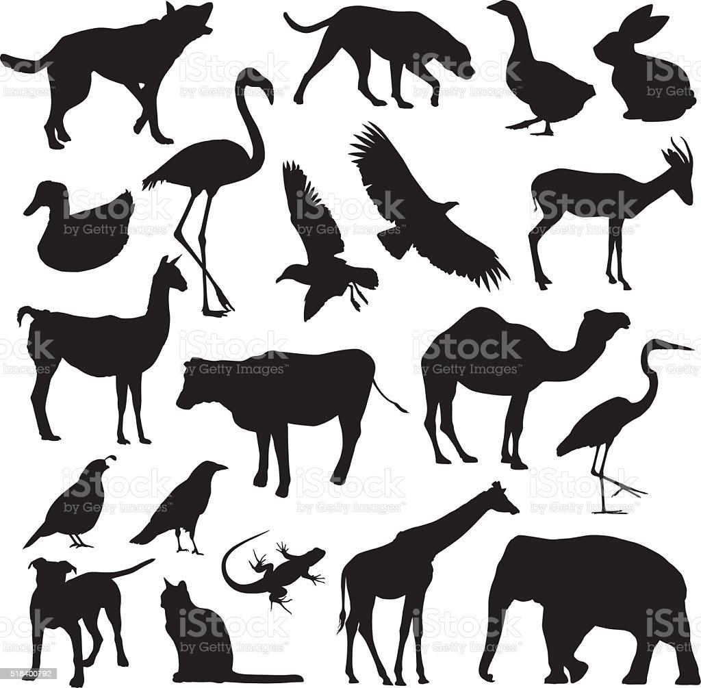 動物のシルエット - アナウサギのベクターアート素材や画像を多数ご用意
