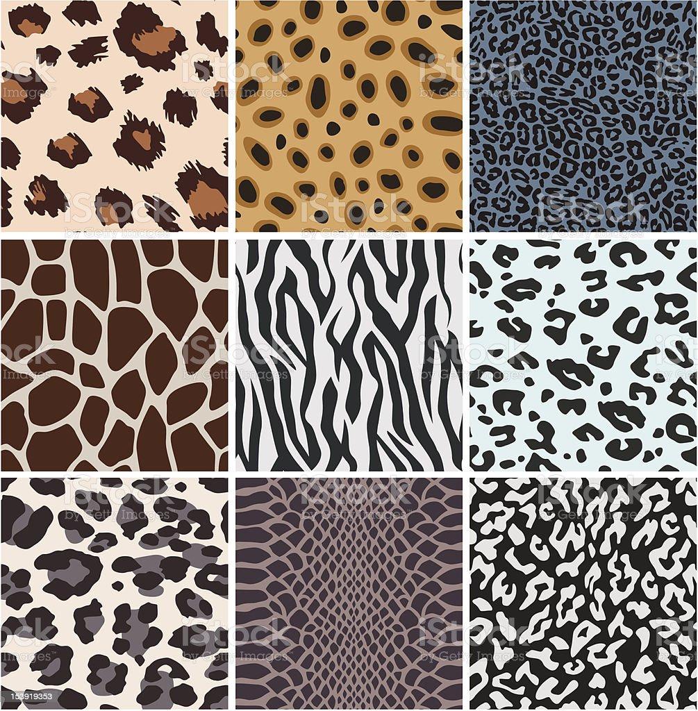 動物の皮膚パターン設計 ベクターアートイラスト