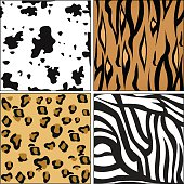 Animal skin pattern vector illustration