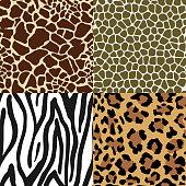Animal Skin Patterns