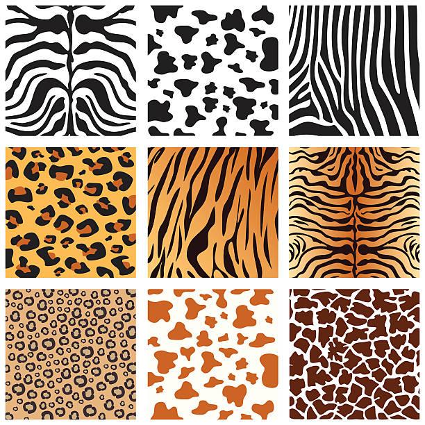 ilustrações de stock, clip art, desenhos animados e ícones de peles de animais - padrões zebra