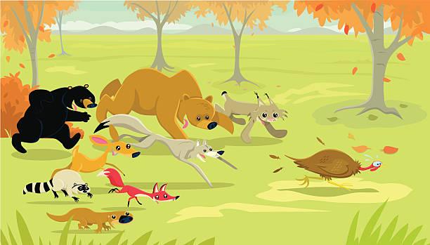 bildbanksillustrationer, clip art samt tecknat material och ikoner med animal thanksgiving - hund skog
