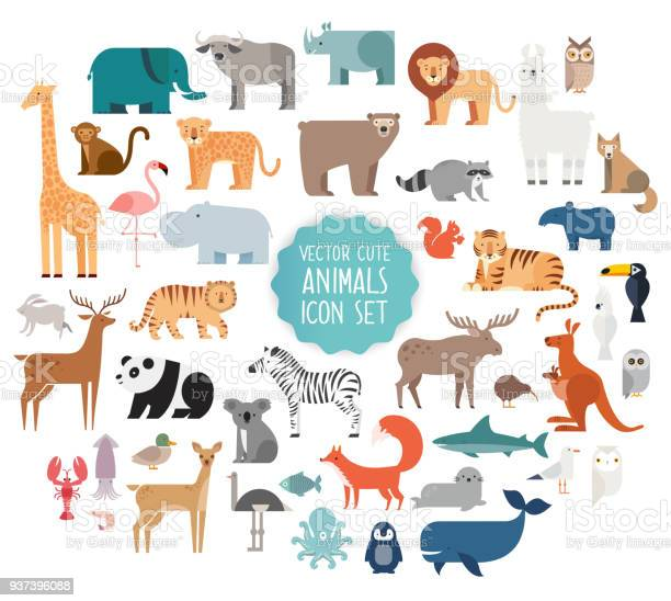 Animal vector illustration vector id937396088?b=1&k=6&m=937396088&s=612x612&h=sp44pen3sksmpmie wfnzpya  nfkd750wtthear0dm=