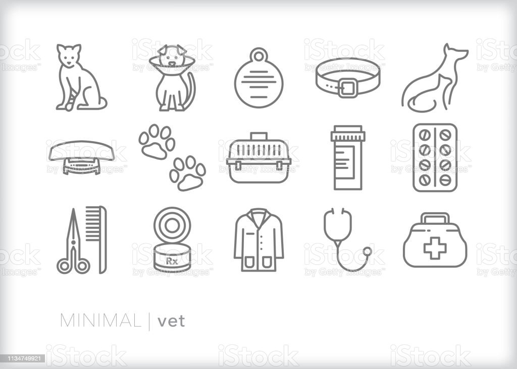 Set of 15 gray vet line icons for animal hospital doctor to take care...