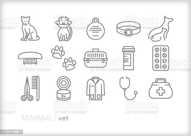 Animal vet line icons for taking care of pets for checkups and when vector id1134749921?b=1&k=6&m=1134749921&s=612x612&h= 04noep bzea7cxjwr7p4ypzikhdivgnr5xxr9zezts=