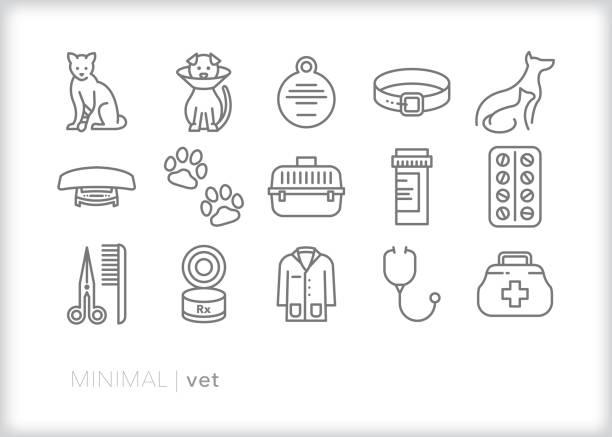 bildbanksillustrationer, clip art samt tecknat material och ikoner med djur vet linje ikoner för att ta hand om hus djur för checkar-ups och emergenies när deras hälsa är i risk zonen - djursjukhus