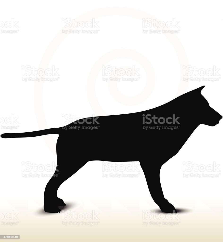 lobo silhueta de animais vetor e ilustração royalty free 474836510