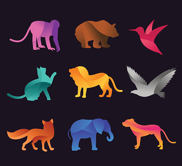 animal zoo vector icons set - eagle character stock illustrations, clip art, cartoons, & icons