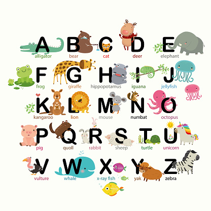 A-Z animals alphabet set for kids, Vector illustration