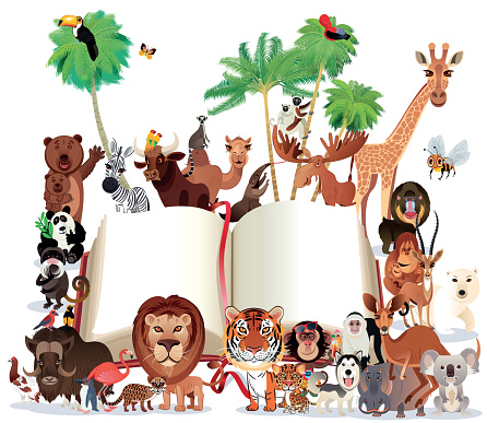 Animals and Book