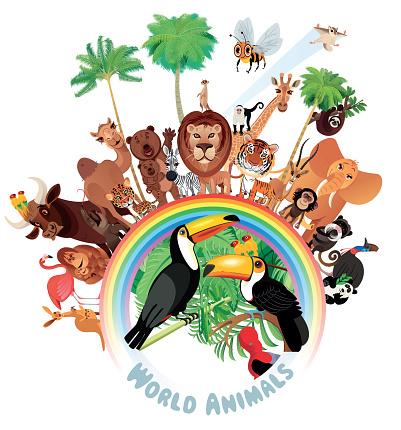 Animals and Rainbow