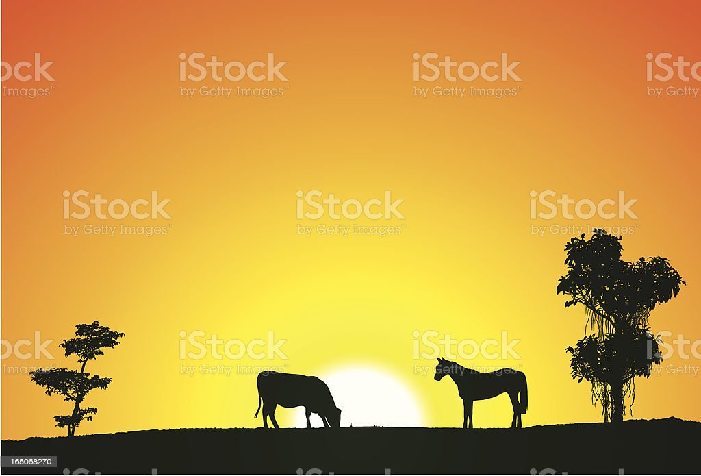 Animals and Sunset royalty-free stock vector art