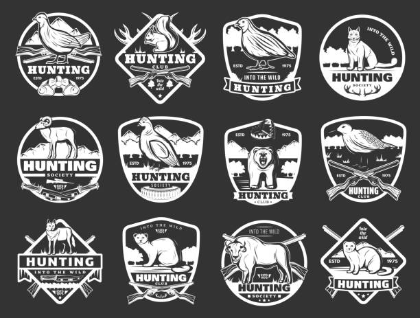 Animals and wild fowl hunting club badges Hunter club badges and hunting society open season icons. Vector hunt ammo rifle gun and traps for wild bear, woodcock and partridge wildfowl, African safari buffalo and mountain sheep or ermine ermine stock illustrations