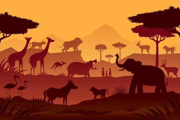 stockillustraties, clipart, cartoons en iconen met dieren en wildlife zonsopgang of zonsondergang achtergrond - safari