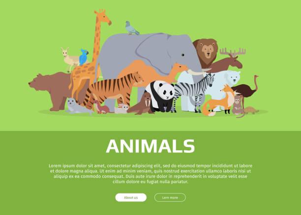 動物の旗。ウェブサイトテンプレート - 動物園点のイラスト素材/クリップアート素材/マンガ素材/アイコン素材