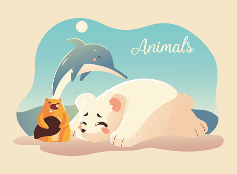 animals cartoon polar bear dolphin and beaver