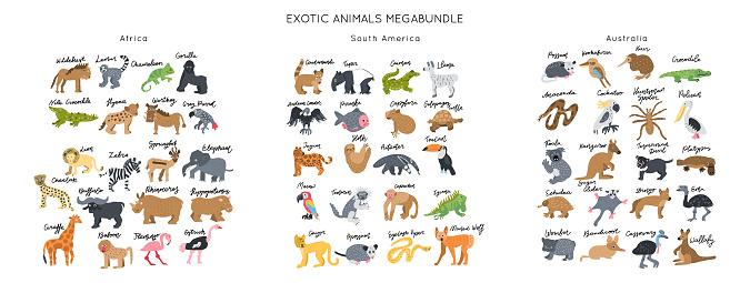 Animals clipart bundle vector