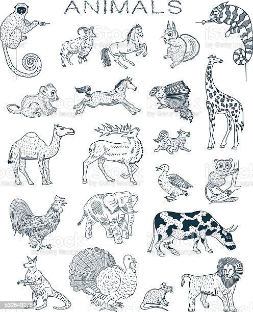 Animals doodles vector id532849278?b=1&k=6&m=532849278&s=612x612&h=nnenbj k6slf0n0utop69xt1vpscxivoamp0fugy1ee=