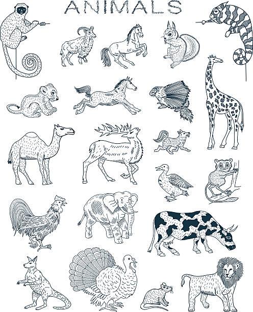 スケッチ動物 - 動物点のイラスト素材/クリップアート素材/マンガ素材/アイコン素材