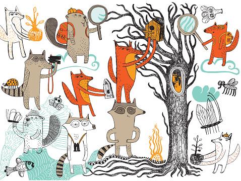 Animals explorers