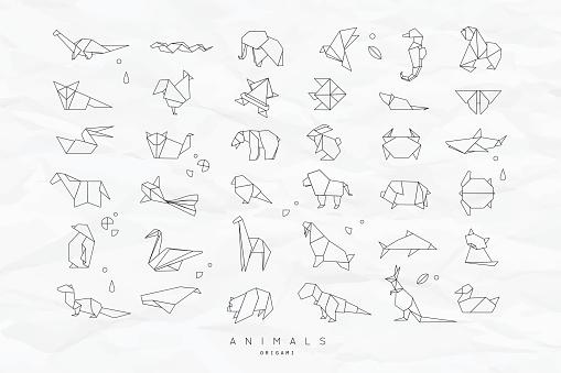 Animals flat origami set crumpled