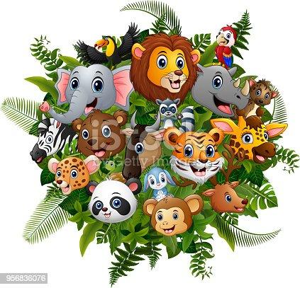 Vector illustration of animals forest cartoon meet together