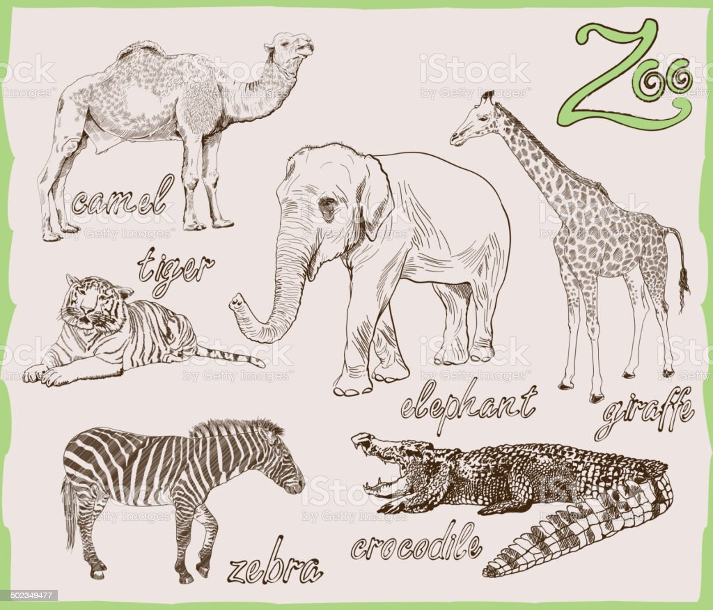 animals from the zoo vector art illustration