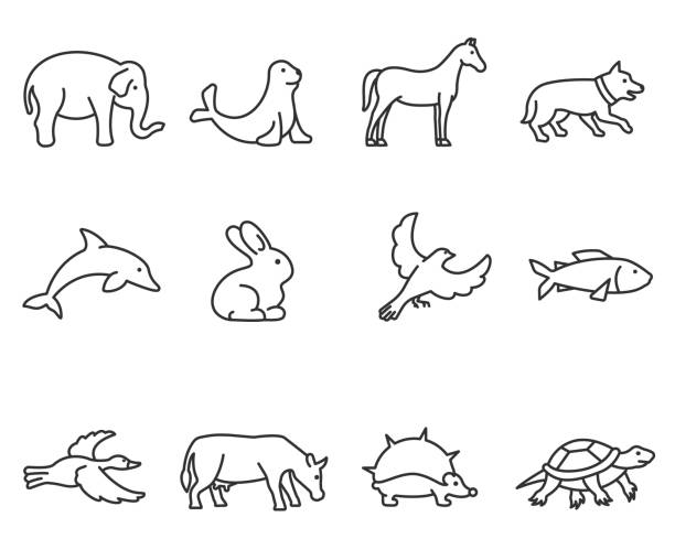 animals icons set. Editable stroke animals icons set, thin line design. various animals, linear symbols collection. zoo animals, isolated vector illustration. rabbit animal stock illustrations