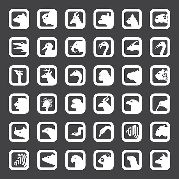 stockillustraties, clipart, cartoons en iconen met animals icons set - blesbok