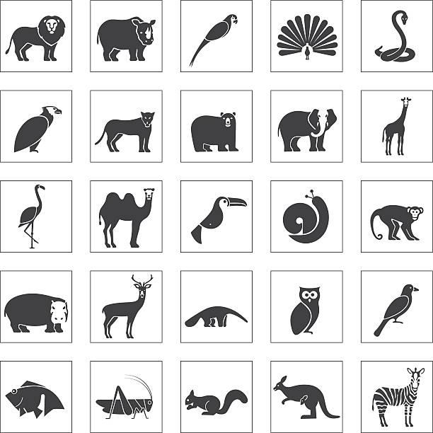 tiere icons set  - ameisenbär stock-grafiken, -clipart, -cartoons und -symbole