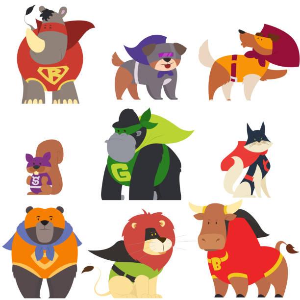 animals in superhero costumes. animals in superhero costumes. vector illustration. headland stock illustrations