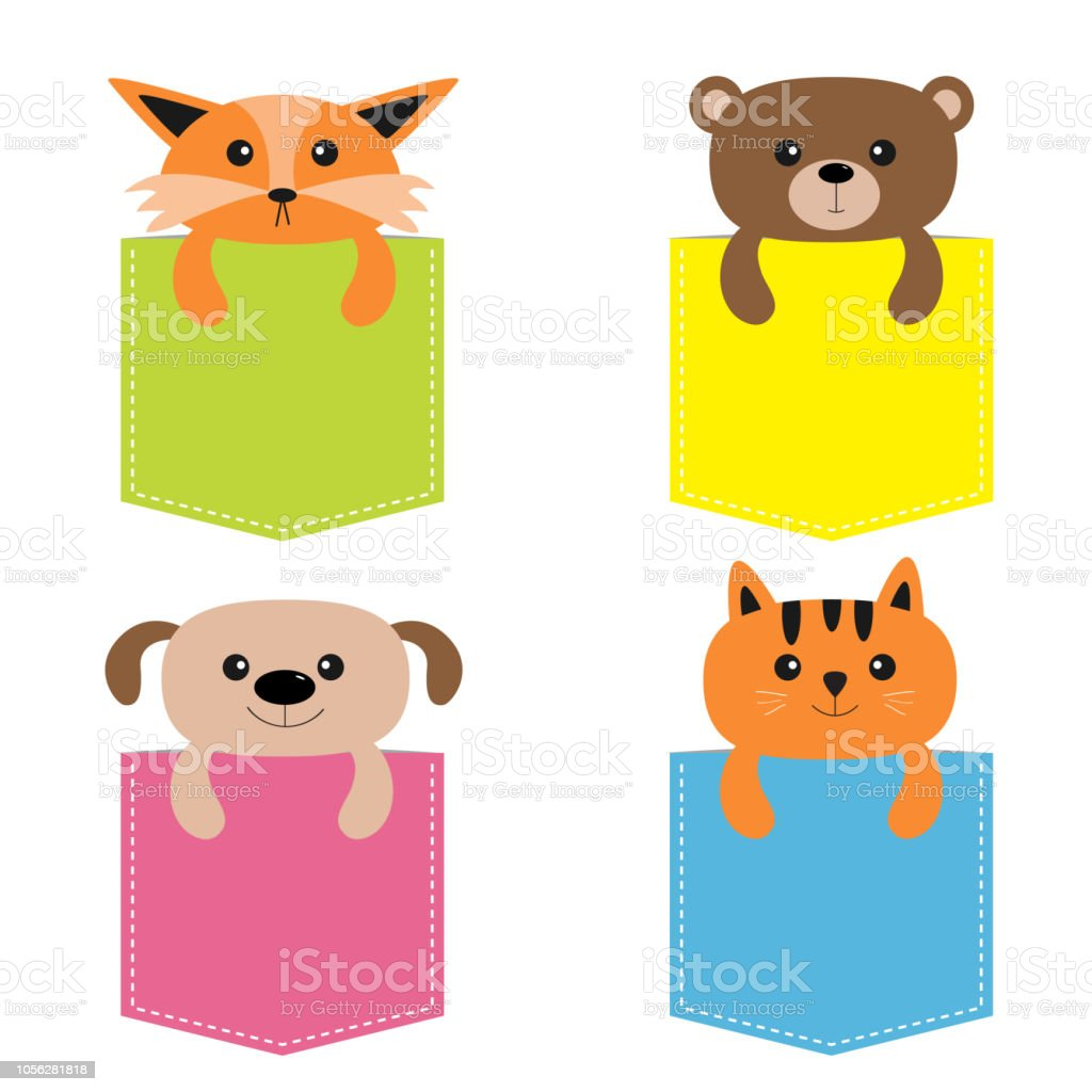 Tiere In Der Tasche Niedlichen Cartoon Bunte Hund Bar Fuchs Katze