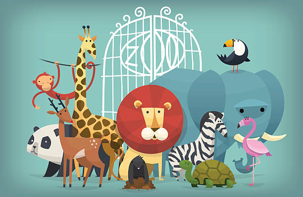 animals in Zoo Vector illustration card with zoo animals standing near gates inviting to visit a Zoo zoo stock illustrations