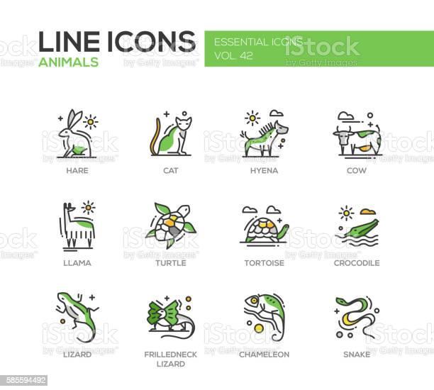 Animals line design icons set vector id585594492?b=1&k=6&m=585594492&s=612x612&h=lfhvysn5d0y55qqk9f5nb8escos2zaltfphtx647vqg=
