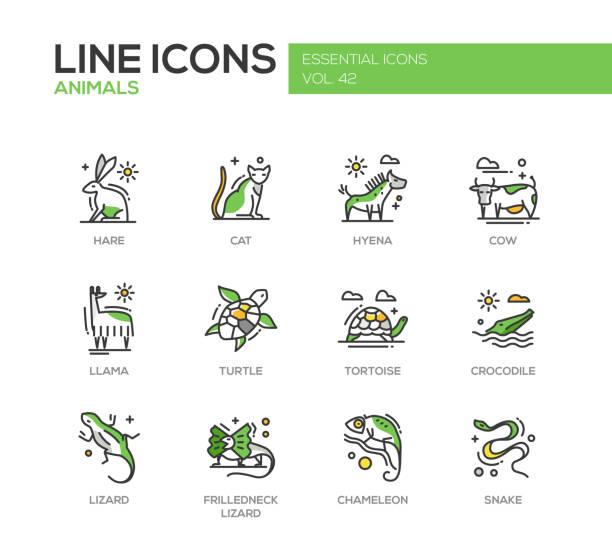 animals - line design icons set - chameleon stock illustrations