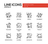 Animals - set of modern vector plain line design icons and pictograms of animals. Horse, sea cow, impala, wildebeest, wild, mointain goat, ovis, musk ox, hippopotamus, squirrel, cachalote boar